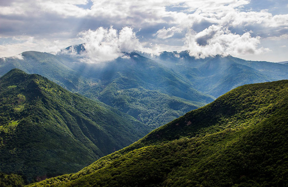 Iran Cloud forest
