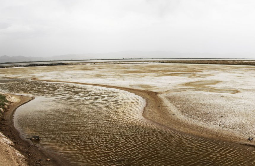 Meyqan Lagoon, a Close Companionship with Migratory Birds Deep Inside the Desert Lands of Arak